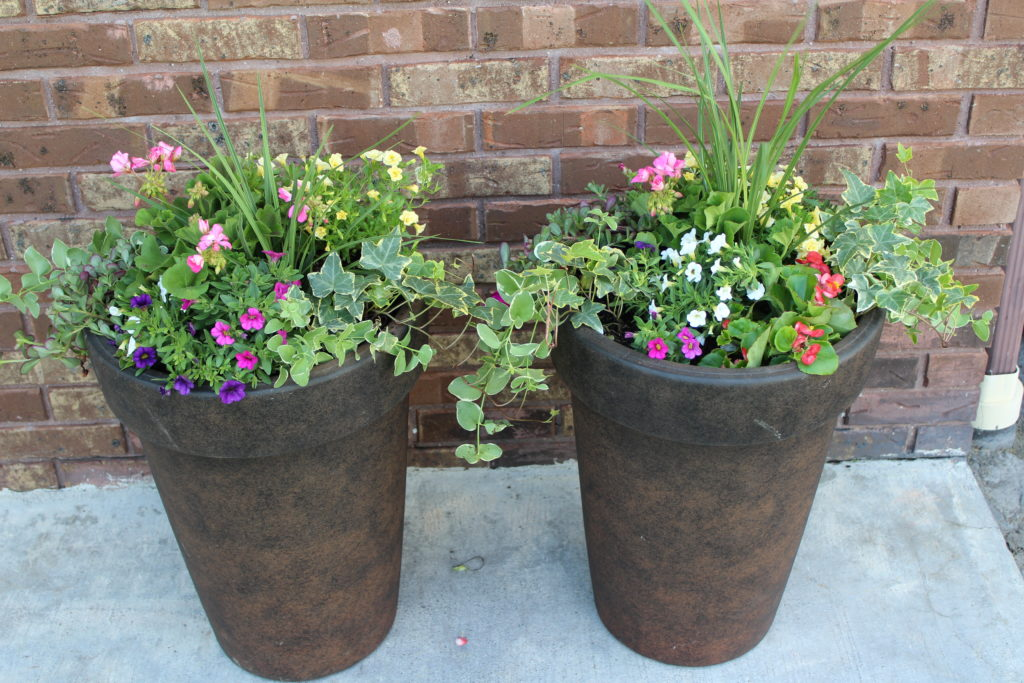 Creating Great Container Flower Pots Busy Lifestyle Gal
