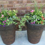 Creating Great Container Flower Pots